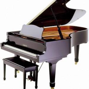 Good piano – nơi chọn mua các sản phẩm piano tốt nhất