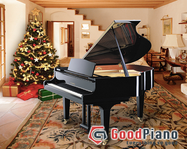 Không gian nổi bật và sang trọng với Grand piano