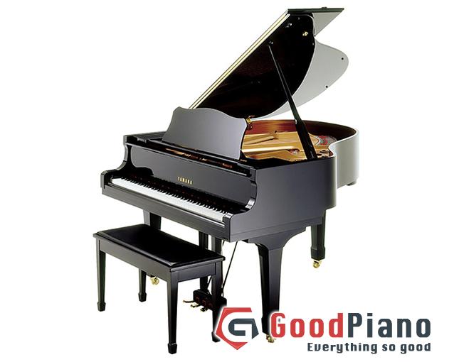 Lịch sử phát triển và cấu trúc đàn Grand Piano