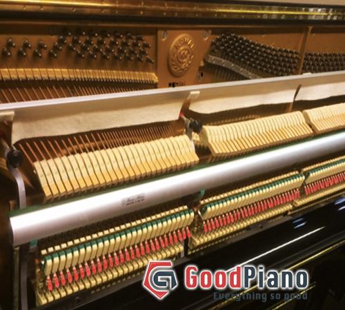 Những điểm cần lưu ý khi lựa chọn đàn Piano