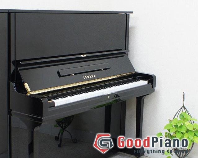 Phân khúc giá đàn piano Yamaha