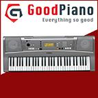 Đàn Organ Yamaha VN300