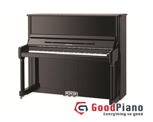 Đàn Piano Ritmuller 123R