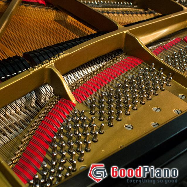 Đàn Piano Steinway & sons D