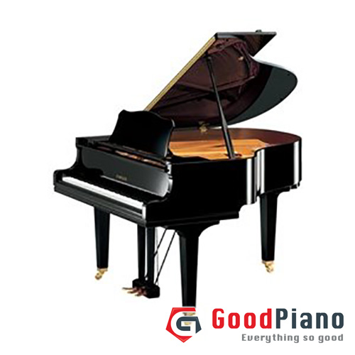 Đàn Grand Piano Yamaha GC1