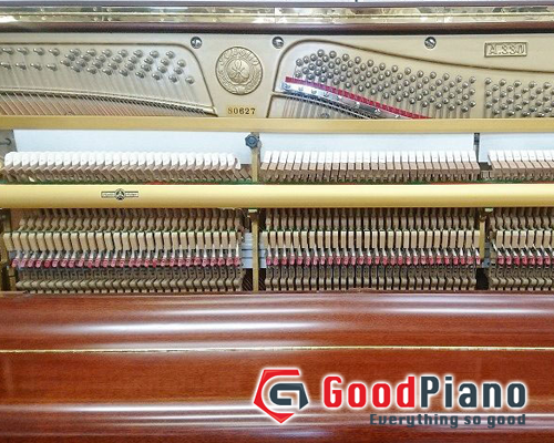 Đàn Piano Apollo A330