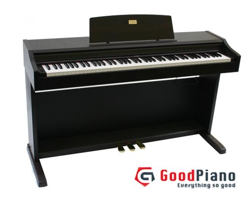 Đàn Piano Điện Casio AP-20