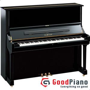 Đàn Piano Yamaha U3G