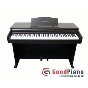 Đàn Piano Điện CASIO AP15