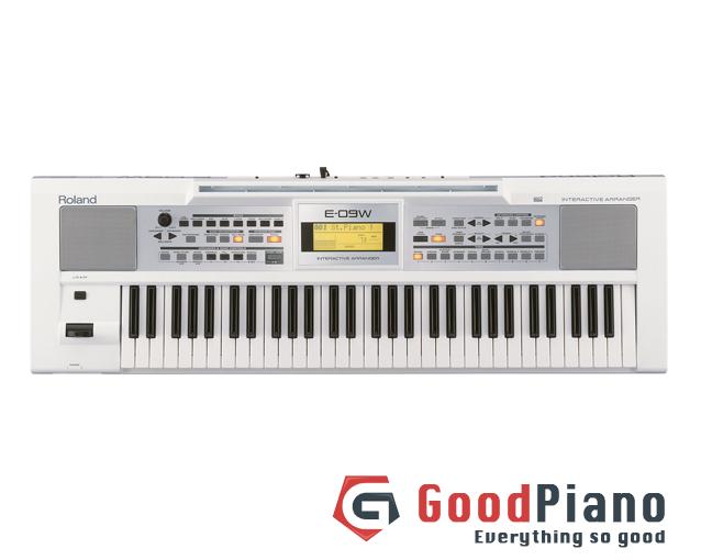 Đàn Organ Roland E-09WHITE