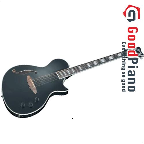 Đàn Electric Guitar Package ERG121GPII METALLIC