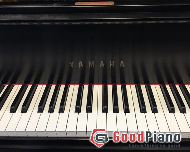 Đàn Piano Yamaha C7B