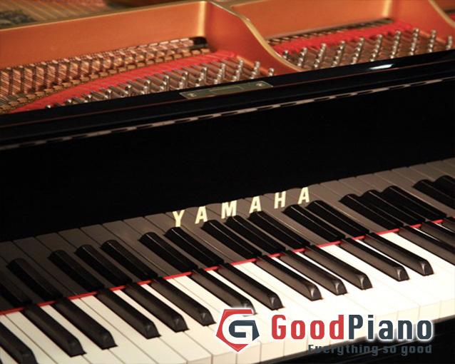 Đàn Grand Piano Yamaha C Series-C5 - Piano cơ