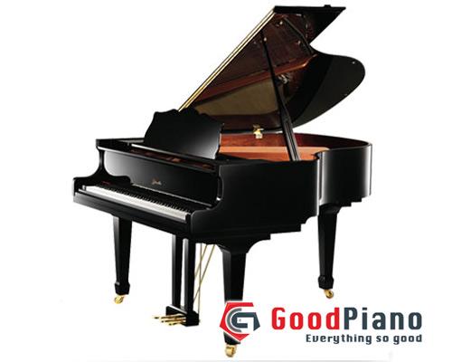 Đàn Piano Ritmuller R9