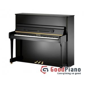 Đàn Piano Wagner W20